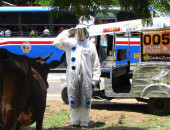 002_hungarian_astronaut_shows_some_respect_to_THE_COW-1024x576